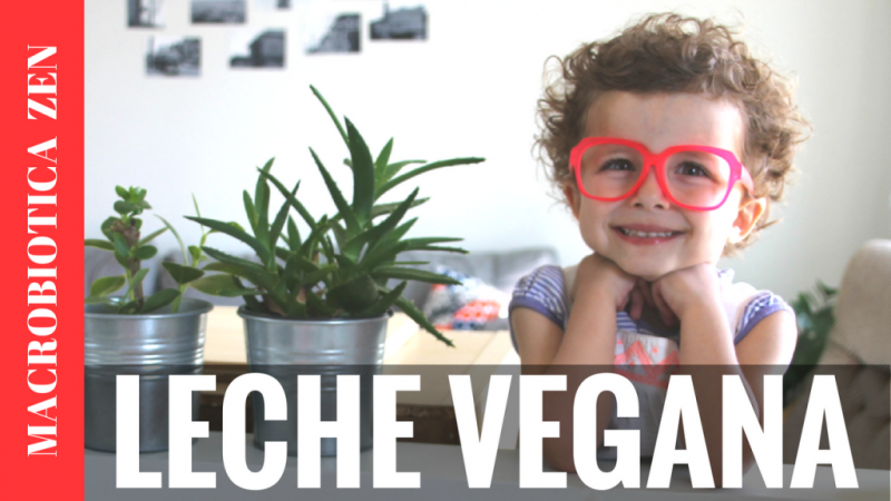 Leches vegetales saludables